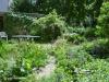 gabihelmchen_vordergarten