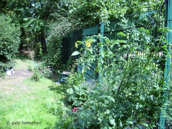 gabihelmchen_urban gardening03